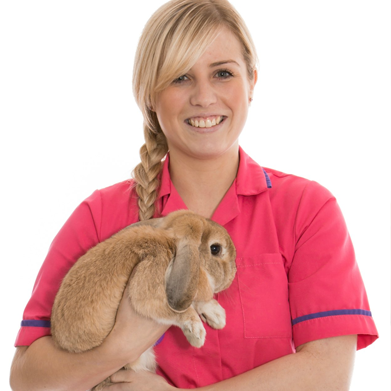 Veterinary Nursing Level 2 Course